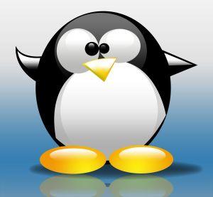 Ako si vybrať linuxovu distribúciu pre začiatočníkov?