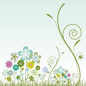 Nálepky na stenu – kvetiny