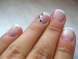 Postup na akrylové nechty